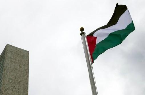 UN-Palestine Flag