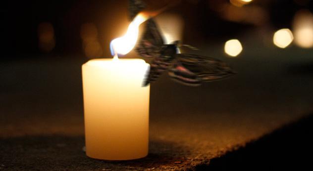 Moth-2-Flame